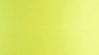 Jaskrawa zieleń / limonkowy