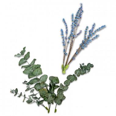Zestaw dekoracyjny z suszonych kwiatów - Eukaliptus i niebiesko-fioletowa lawenda