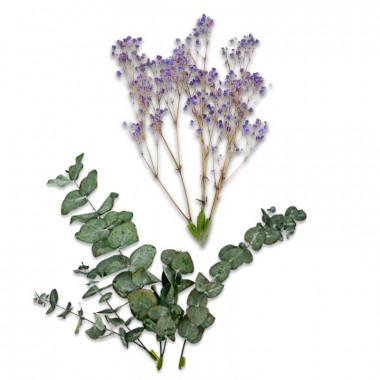 Zestaw dekoracyjny z suszonych kwiatów - Eukaliptus i fioletowa gipsówka