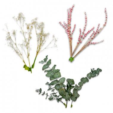 Zestaw dekoracyjny z suszonych kwiatów - Eukaliptus, gipsówka i różowa lawenda