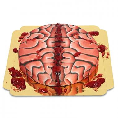 Tort - mózg