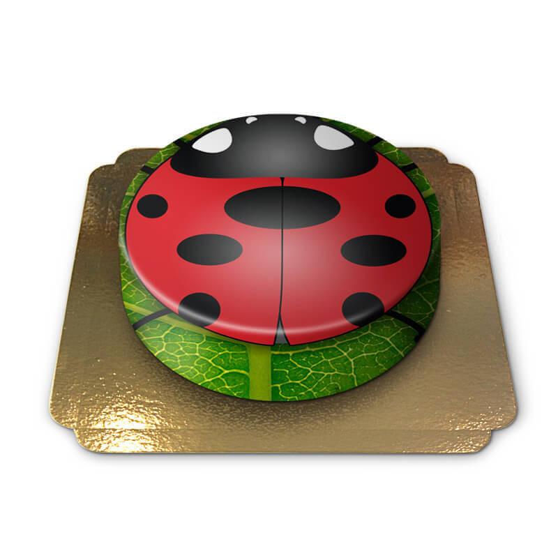 Tort z biedronką